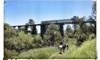 Brisbane Valley Railtrail