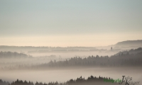 Bremelau im Nebel