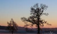 Sonnenaufgang-2
