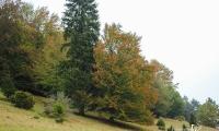 Goldener Oktober Wanderritt Tag 1 -04