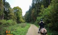 Goldener Oktober Wanderritt Tag 1 -07