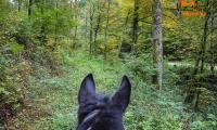 Goldener Oktober Wanderritt Tag 1 -11