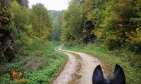 Goldener Oktober Wanderritt Tag 2-02