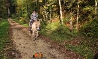 Goldener Oktober Wanderritt Tag 2 - 25