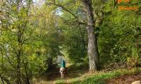 Goldener Oktober Wanderritt Tag 3 -06