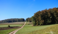 Goldener Oktober Wanderritt Tag 3 - 17